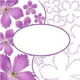 Flower card Stock Image