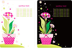 Flower card set Stock Photos