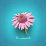 Flower Card Stock Images