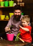 Flower care watering. Soil fertilizers. Family day. Greenhouse. happy gardeners with spring flowers. Father and son stock image