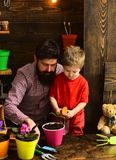 Flower care watering. Soil fertilizers. Father and son. Fathers day. Family day. Greenhouse. bearded man and little boy stock photos