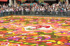 Flower carpet 2008. Flower carpet-2008 in Brussels on Grand-Place Royalty Free Stock Photos