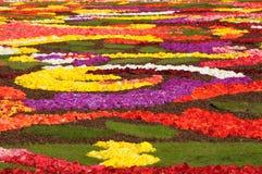 Flower carpet 2008 Royalty Free Stock Image