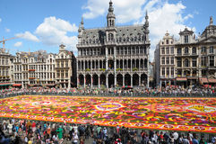 Flower carpet 2008. Flower carpet-2008 in Brussels on Grand-Place Stock Images