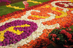 Flower carpet 2008. Flower carpet-2008 in Brussels on Grand-Place Stock Photography