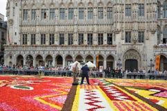 Flower Carpet 2012 Royalty Free Stock Image