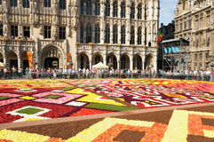 Flower Carpet 2012 with African theme Royalty Free Stock Photos