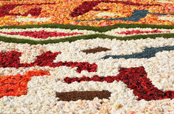 Flower carpet Royalty Free Stock Photography