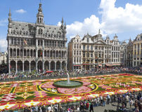 Flower carpet in Brussels 2010 Royalty Free Stock Photo