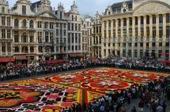 Flower carpet in Brussels Stock Image