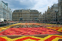 Flower carpet in Brussels. Flower carpet in Grand Place in Brussels, Belgium Stock Images