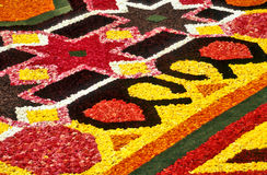 Flower carpet detail Stock Photo