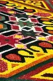 Flower carpet detail Royalty Free Stock Photos