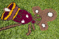 Flower carpet, Galicia, Spain Stock Photos
