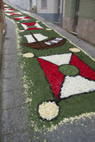 Flower carpet, Galicia, Spain Stock Images