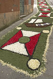 Flower carpet, Galicia, Spain Royalty Free Stock Image