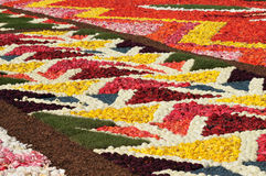 Flower Carpet on Grand Place Stock Images
