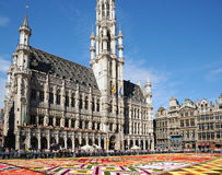 Flower Carpet on Grand Place. BRUSSELS, BELGIUM-AUGUST 15: Thousands of tourists from the entire world arrived to see african theme Flower Carpet on Grand Place Royalty Free Stock Photo