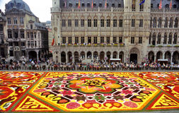 Flower Carpet in Grande Place. The Brussels flower carpet is designed of Begonias every second year in the central square - Grand Place. This years theme was the Stock Image