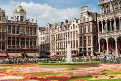 Flower carpet on Grande Place in Brussels royalty free stock photos