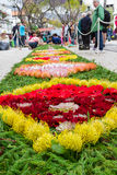Flower carpets along the central promenade of Avenida Arriaga in Funchal City, Madeira, Portugal Stock Image