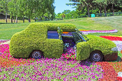 Flower cars exhibition at Spivoche Pole in Kyiv, Ukraine Stock Photography