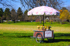 Flower cart. Roadside flower cart with umbrella Stock Images