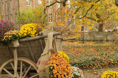 Flower cart in Arcen, The Netherlands. A flower cart with autumn colors in the castle of Arcen, The Netherlands Stock Photos