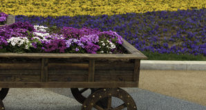 A flower cart Stock Images