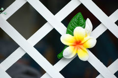 Flower ceramic Royalty Free Stock Photo