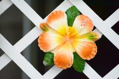 Flower ceramic Stock Photos