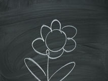 Flower Chalk blackboard Royalty Free Stock Photography