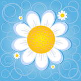 Flower chamomile. Illustration of a paper sticker in the form of a chamomile Royalty Free Stock Photo