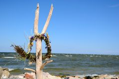 Flower chaplet on branch ocean Stock Photos