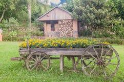 Flower Charriot Bento Goncalves Brazil Stock Image