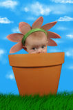Flower child Stock Photos