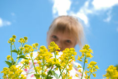 Flower child and sky. Girl behind the yellow flowers against the sky Stock Images