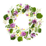 Flower circle of different leaves and lilac on a white backgroun Stock Image