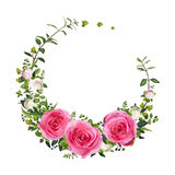 Flower circle round wreath coronet flowers pink Rose Hypericum f Royalty Free Stock Images