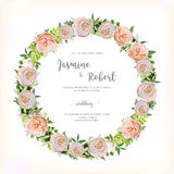 Flower circle round Wreath of Pink Rose, Eucalyptus green fern, Stock Photos