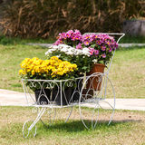 Flower clay pot Stock Photo