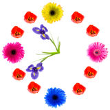 Flower clock. Royalty Free Stock Image