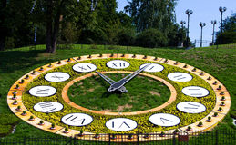 Flower clock Royalty Free Stock Photography
