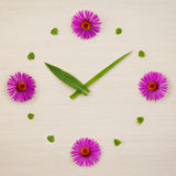 Flower clock. An image of a beautiful flower clock Royalty Free Stock Images