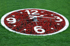 Flower Clock Against Lawn Background Royalty Free Stock Images
