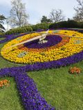 Flower clock in Geneve. big contrast stock photo