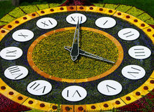 Flower clock, Kiev, Ukraine Royalty Free Stock Image