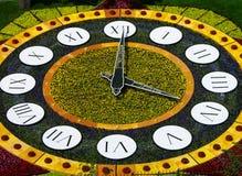 Flower clock, Kiev, Ukraine Royalty Free Stock Image