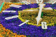 Flower clock in Lviv stock images