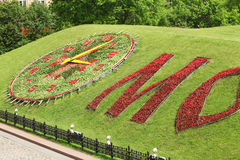 Flower Clock Stock Photo